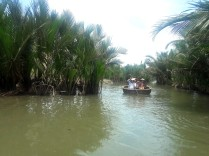 Water Coconut Forest 5